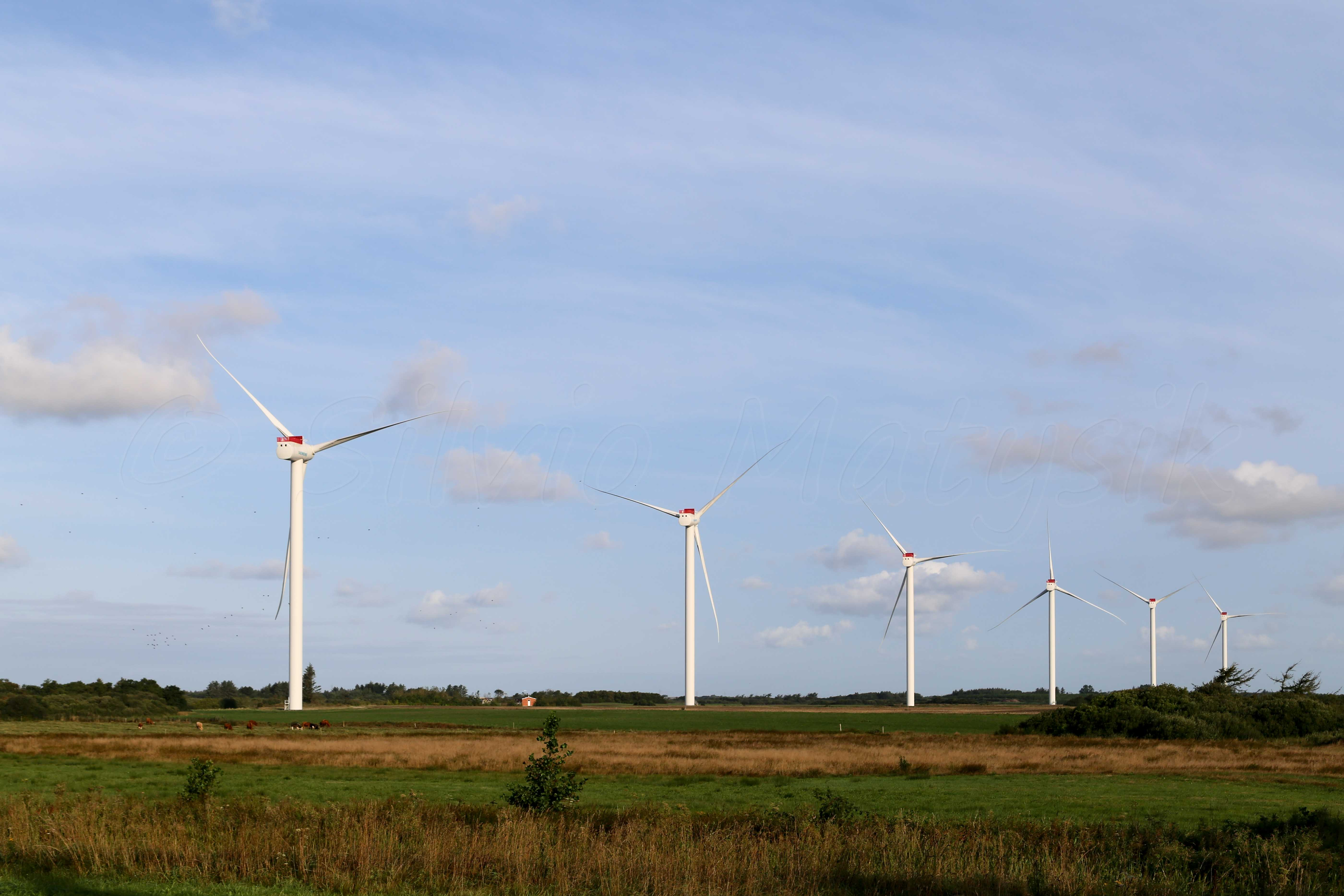 Welcome To Wind Turbine Modelscom Turbines For Electricity Generation Come In All Sizes And They The 20 Last