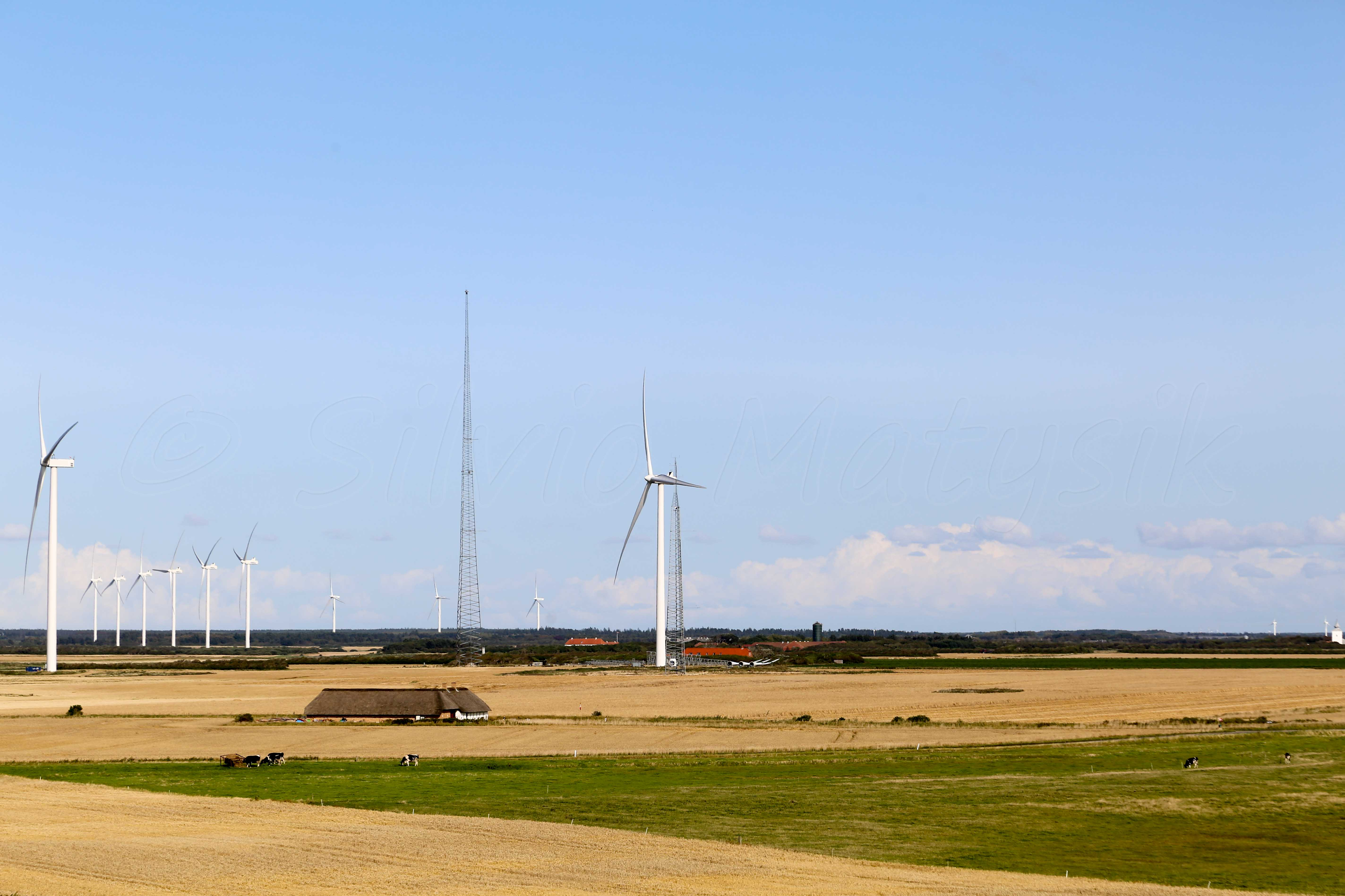 vestas wind Vestas has become a dominant, reliable provider of wind turbines, in part by building on its position as a key supplier to the danish market the us tax credi.